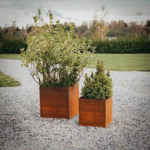 Fiora Set om 2 – blomkrukor i cortenstål