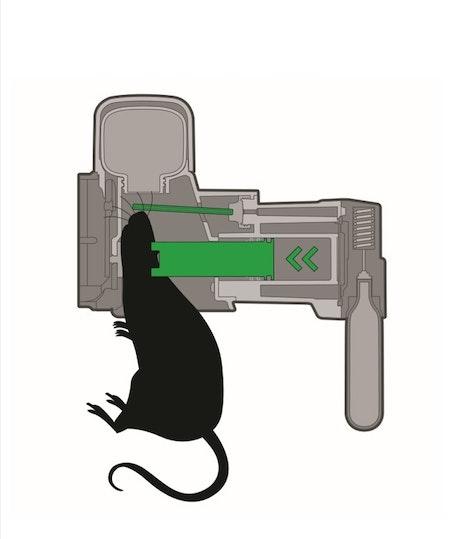 2 st Goodnature a24 proffsfälla mot mus / rått