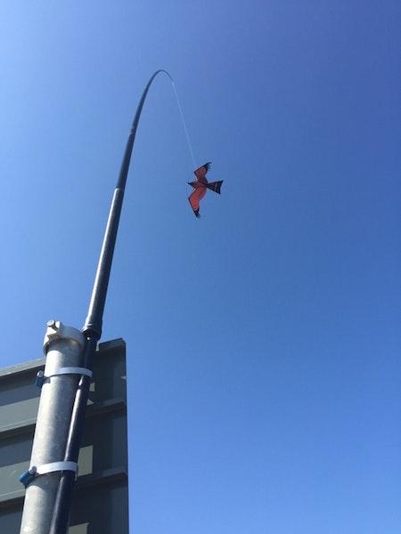 Fågelskrämma Komplett med drake 6 meter.