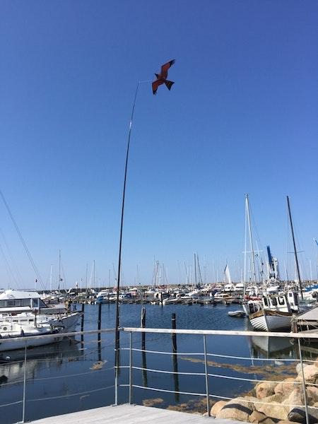 Fågelskrämma Komplett med drake 7 m. Fraktfritt