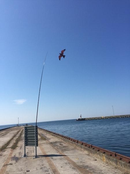 Fågelskrämma med drake 5 meters och 1 boll.