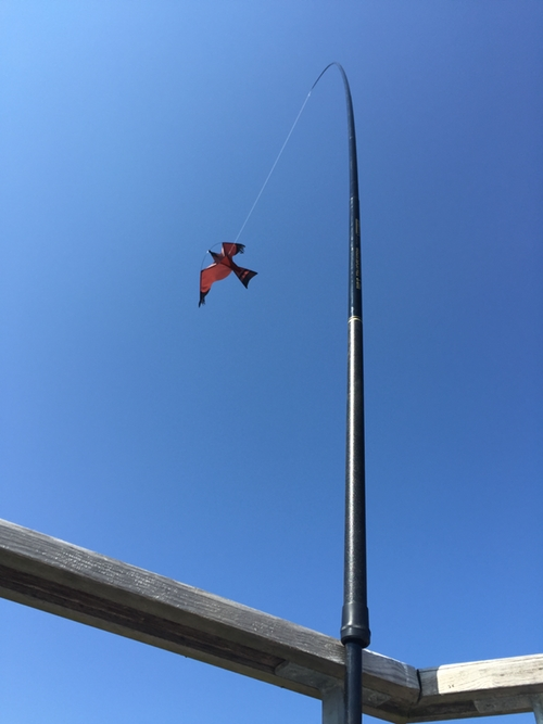Fågelskrämma Komplett 6 meter med drake + 1 st boll