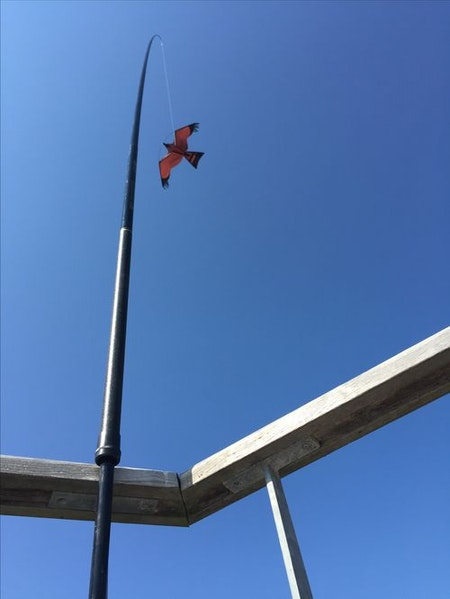 Fågelskrämma reserv-spö 8 meter