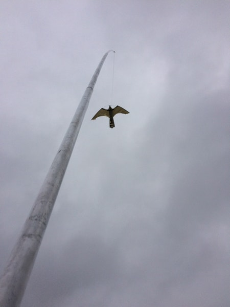 Fågelskrämma aluminium reserv-spö 5 meters