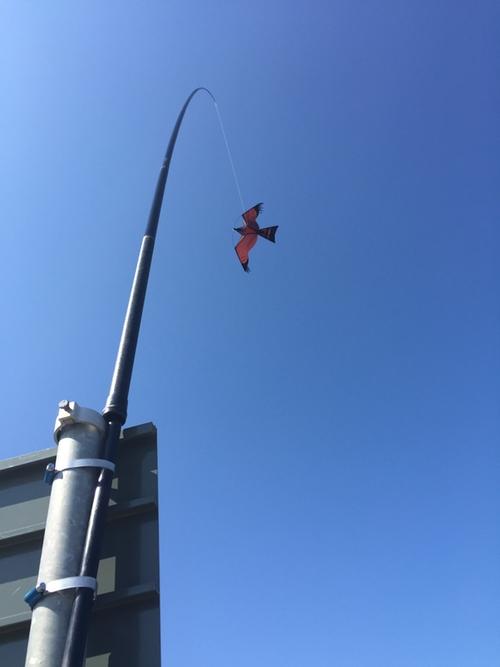 Fågelskrämma med drake 10 st, 7 m