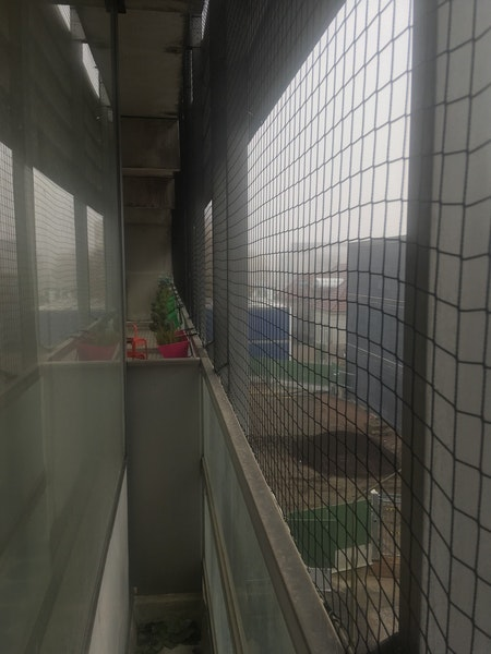 Fågelnät, kattnät 25 x 10 meter. 50 mm