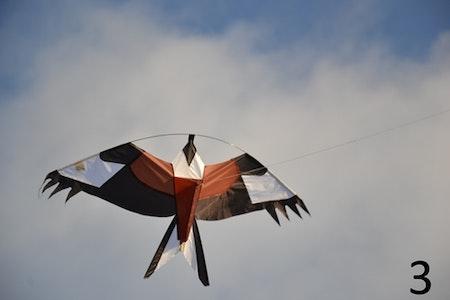 2 pack 6 m Fågelskrämma Komplett med 4 drakar.