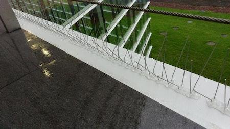 Fågelspik w-typ 12,5 meter. Spara 42 %