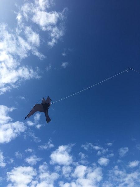 4 m Fågelskrämma med drake och 1 boll. Fraktfritt.
