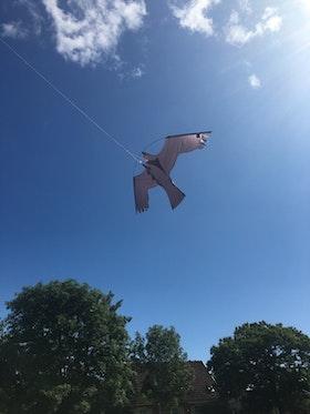Fågelskrämma Komplett med drake 7 m. LAGERTÖMNING