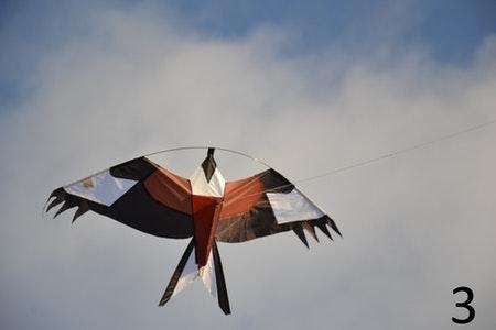 4 m Fågelskrämma med drake. Fraktfritt. spara 37 %