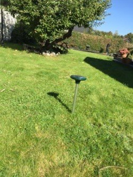Mullvadsskrämma som stör ut mullvaden i trädgården fraktfritt