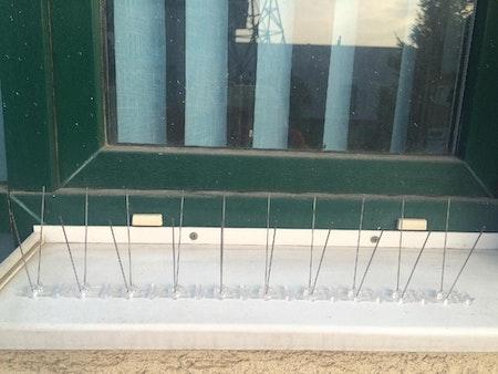 Fågelpiggar 5 meter s-type . Fraktfritt