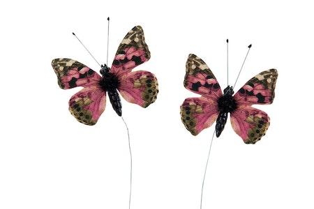 Fjäril/stick