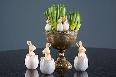 Kaniner i ägg