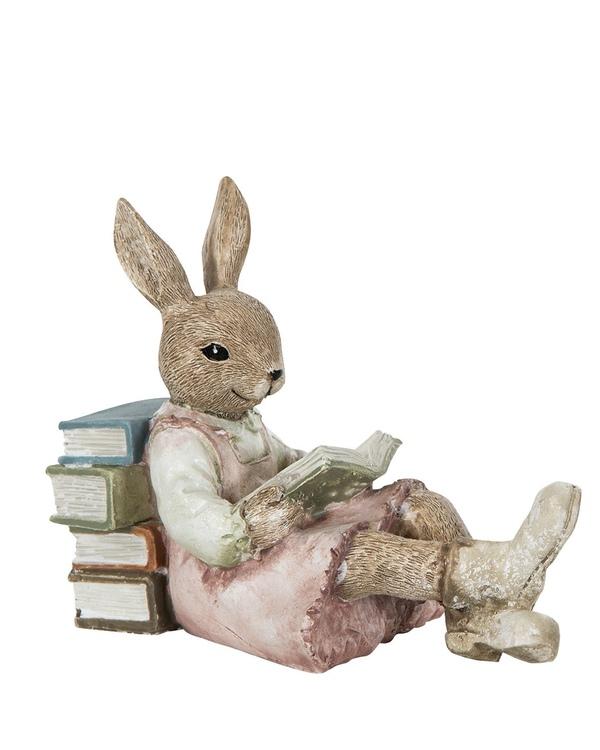 Kanin flicka som läser