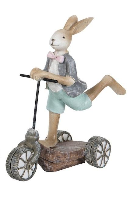 Kanin pojke på sparkcykel