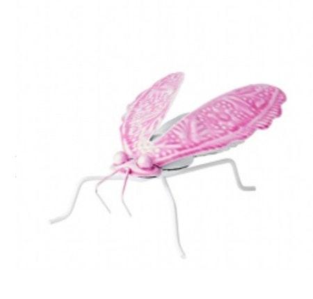 Insekt rosa