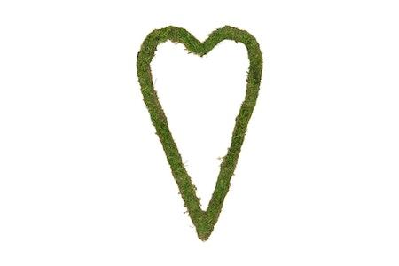 Mosshjärta