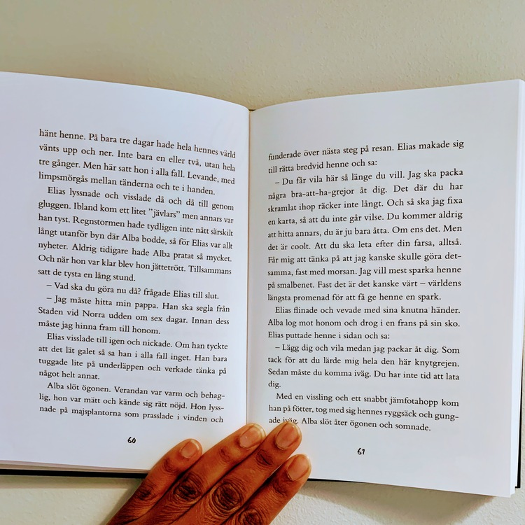Barnboken Modigast i världen, författare Alexander och Malin Karim, Illustratör Andrea Femerstrand, Förlag Bonnier Carlsen. Mångfald bland karaktärerna, bruna barn, mixade barn representerade i boken.