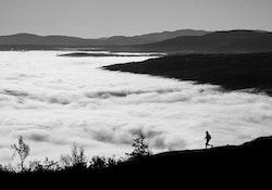 Mountain Runner Poster