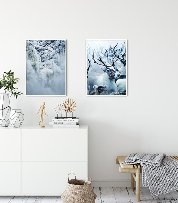 Reindeers Poster