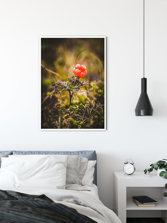 Cloudberry Poster