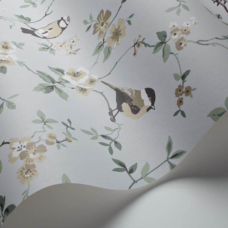 Falsterbo Birds 4681