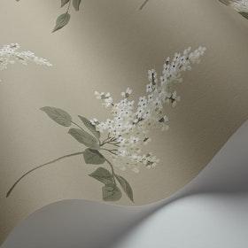 Lilacs 4036