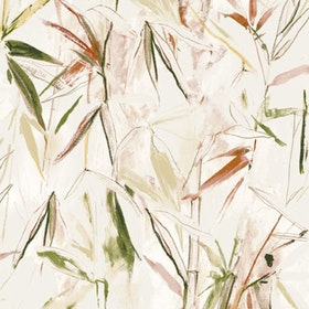Carrizo Moss