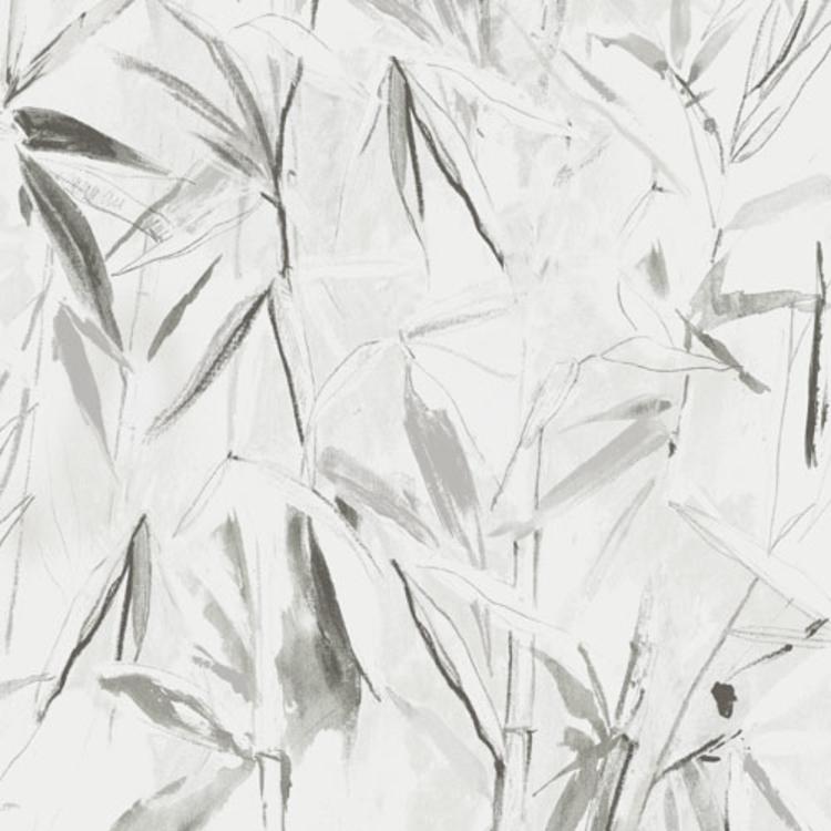Carrizo Silver