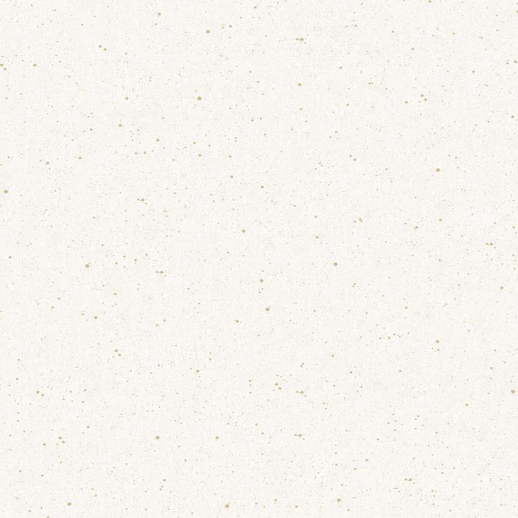 Vivid, 384520