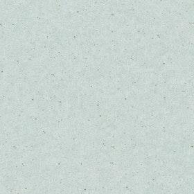 Vivid, 384523