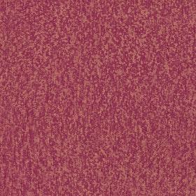 Sundari, 375156