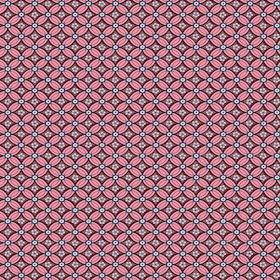 Pip 2014, 341023