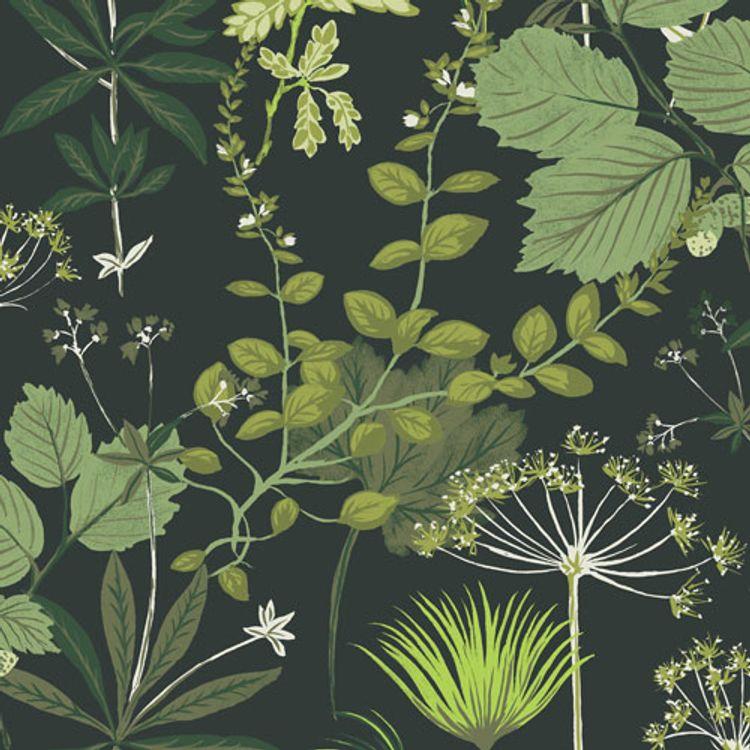 Herbario Greenery