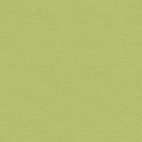 Gini Lime
