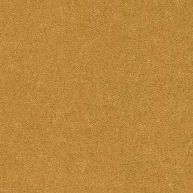 Koaru Gold
