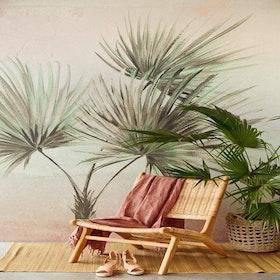 Palm Ombre