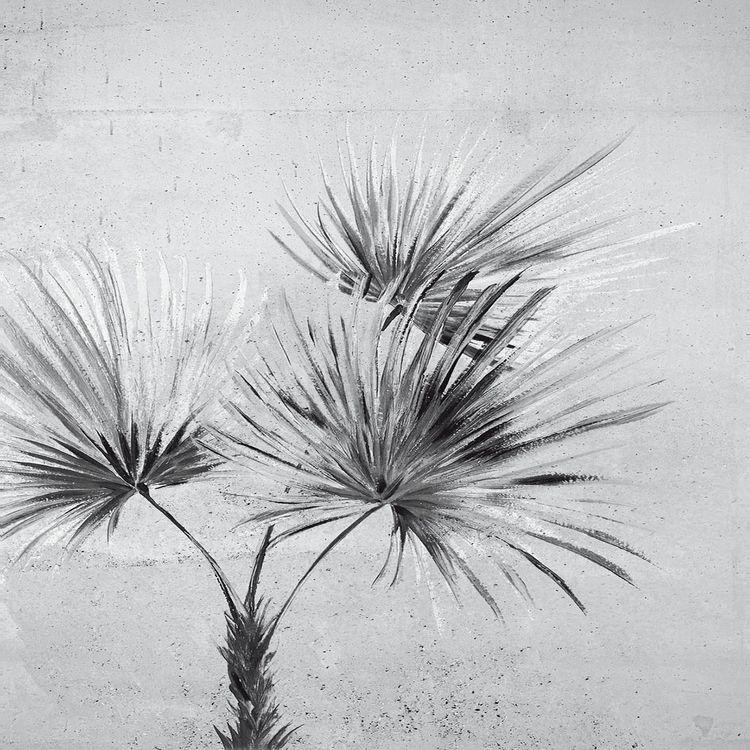 Palm Greyscale