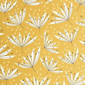 Wildflower Acacia