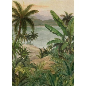 Tropical Morning, 22780