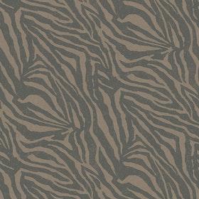 Zebra Mocha
