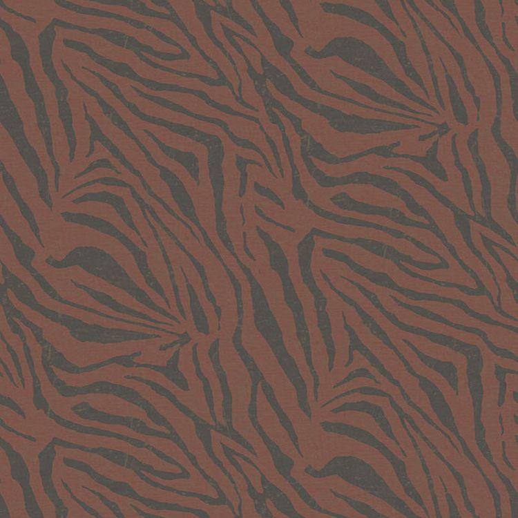 Zebra Rhubarb
