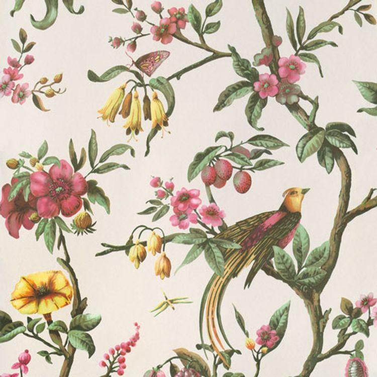 Birds Of Paradise Beige