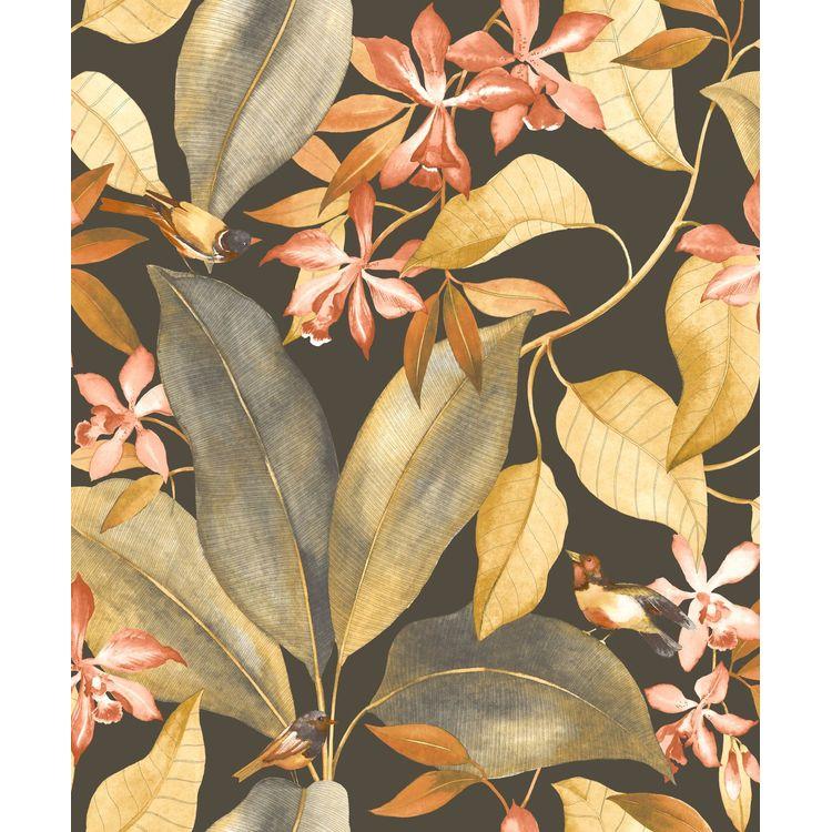 Birdsong Noir / Jaune / Orange