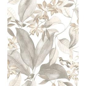 Birdsong Taupe / Gris