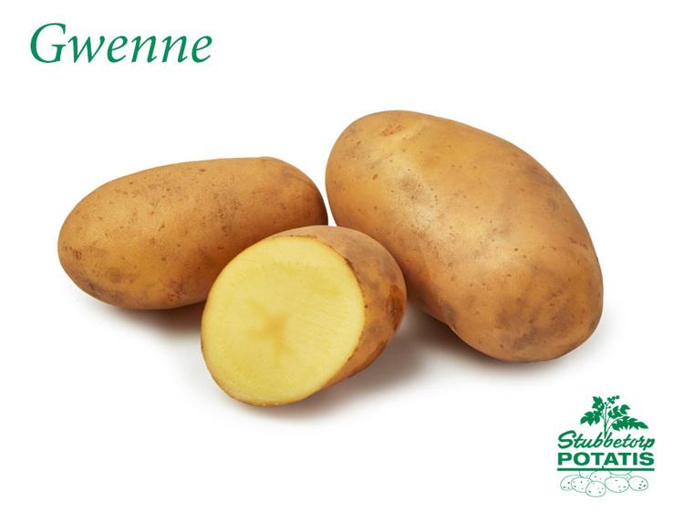 Gwenne