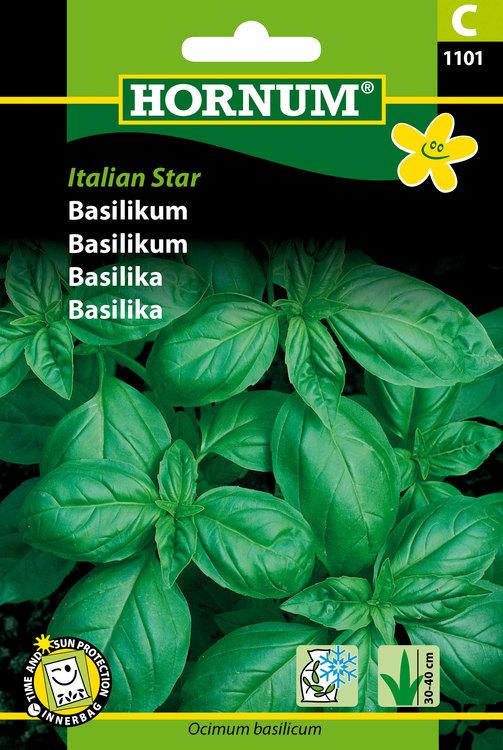 "Basilika ""Italien Star"""