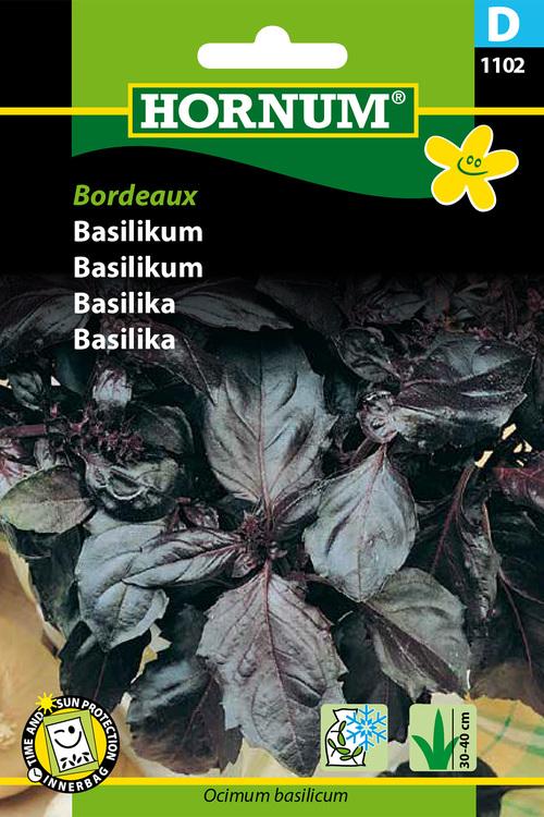 Bordeaux Basilika